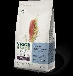 *試食優惠* Vigor & Sage Oatgrass Hairball Control 燕麥草成貓 400g