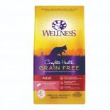 Wellness Complete Health 9224 無穀物成貓三文魚配方 5lbs8oz