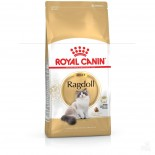 Royal Canin 2351300 Ragdoll(RD)布偶貓配方-02kg