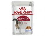 Royal Canin 2375600 (啫喱系列)成貓滋味配方-85g