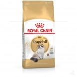 Royal Canin 2351400 Ragdoll(RD)布偶貓配方-10kg