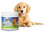 EverPup 全方位營養產品