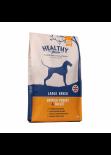 Healthy Paws [43101]- 火雞肉小米成犬狗糧(大粒) 6kg
