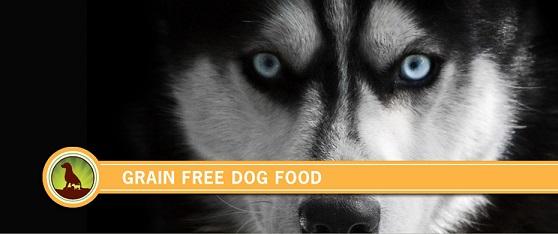 dog-food-grain-free.jpg