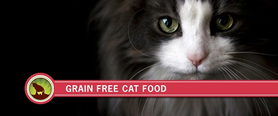 grain-free-cat-food-holistic-blend-1.jpg