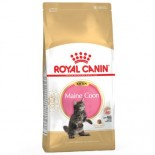 Royal Canin 2521100 Maine coon kitten 緬因幼貓配方貓糧-10kg